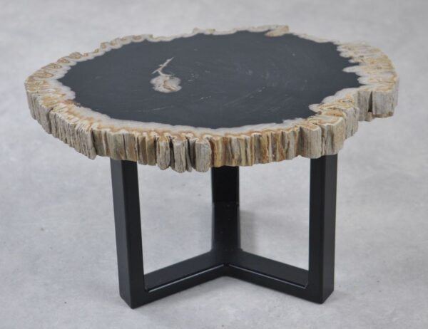Coffee table petrified wood 35238