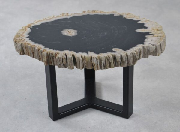 Coffee table petrified wood 35241