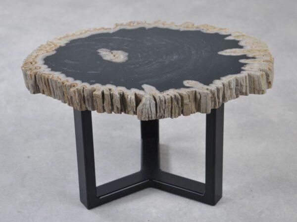 Coffee table petrified wood 35242