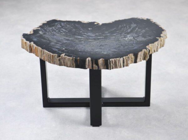 Coffee table petrified wood 35243