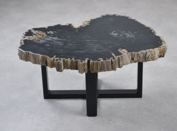 Coffee table petrified wood 35245