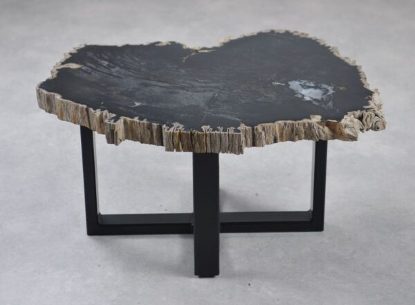 Coffee table petrified wood 35246