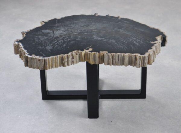 Coffee table petrified wood 35247