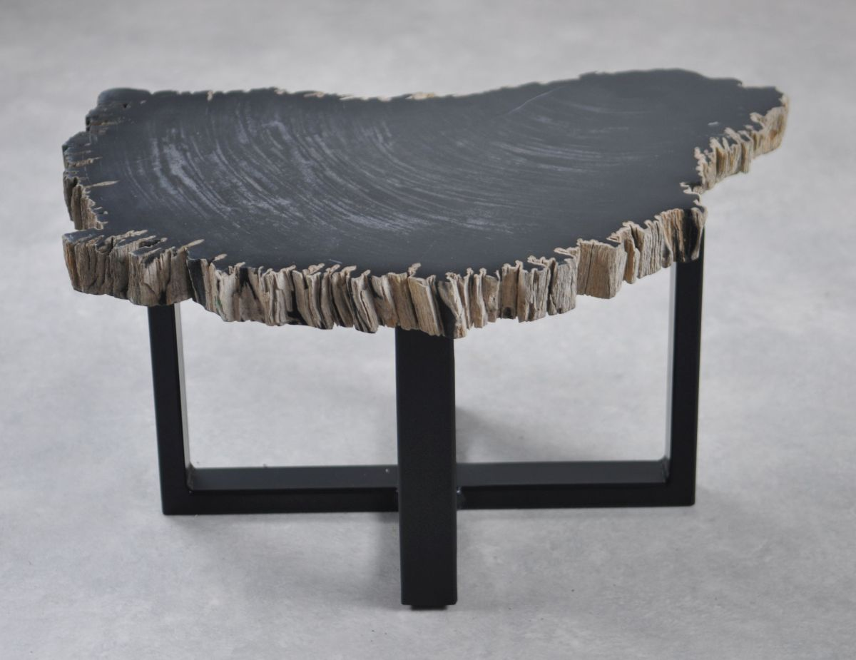 Coffee table petrified wood 35251