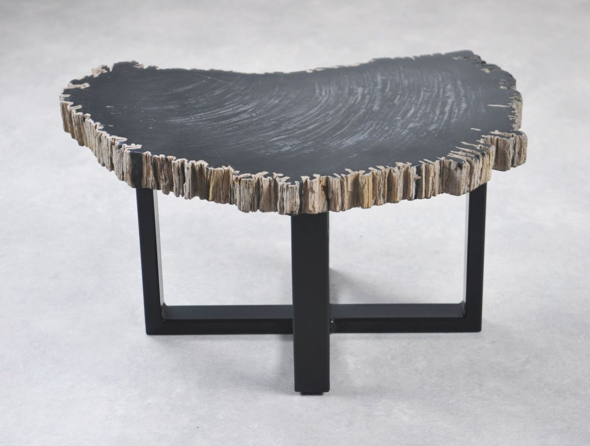 Coffee table petrified wood 35253