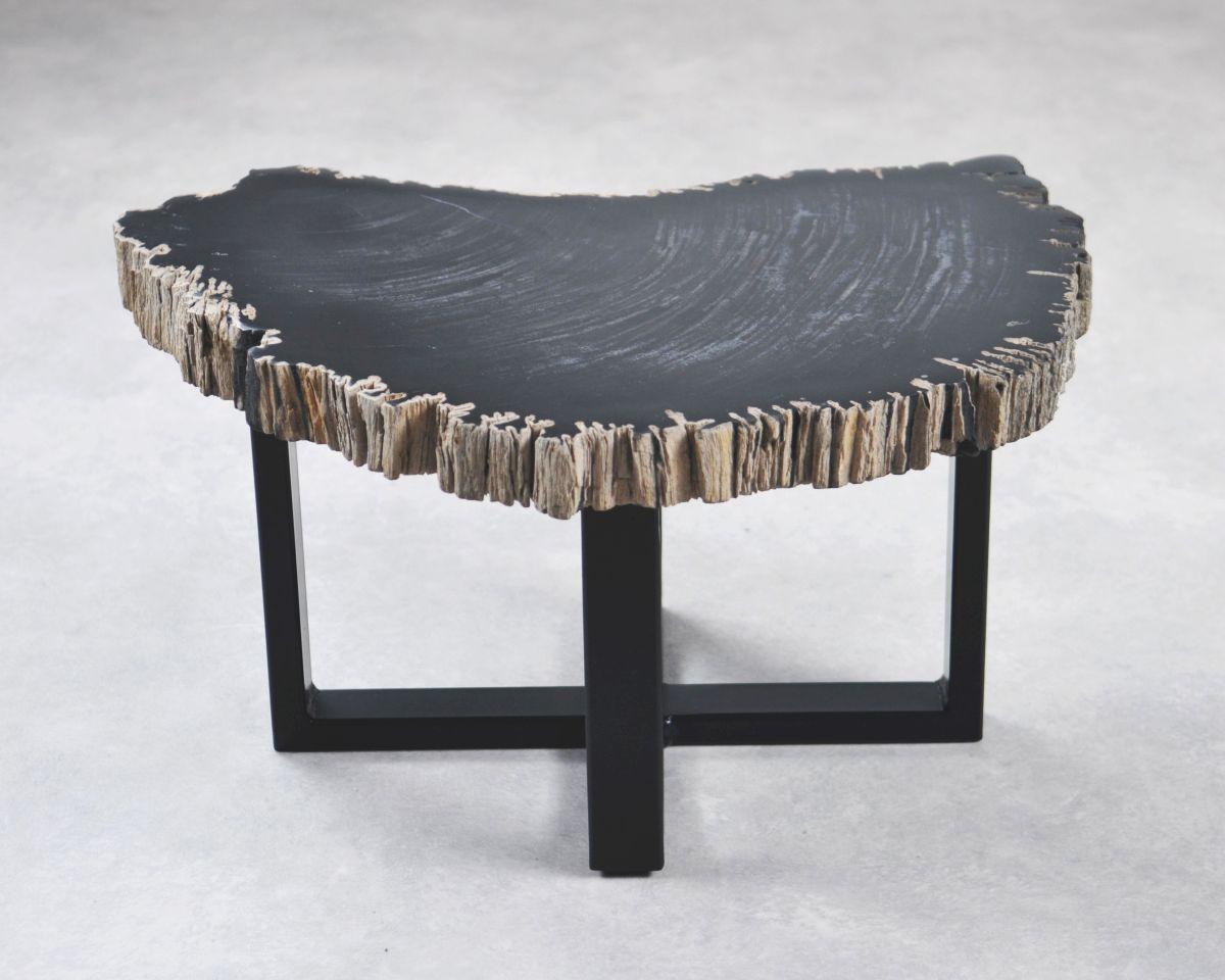 Coffee table petrified wood 35254