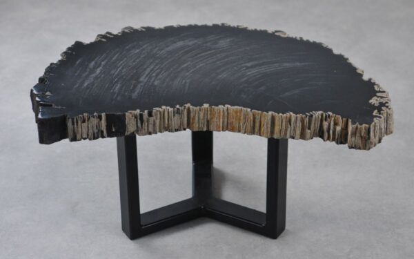 Coffee table petrified wood 35256