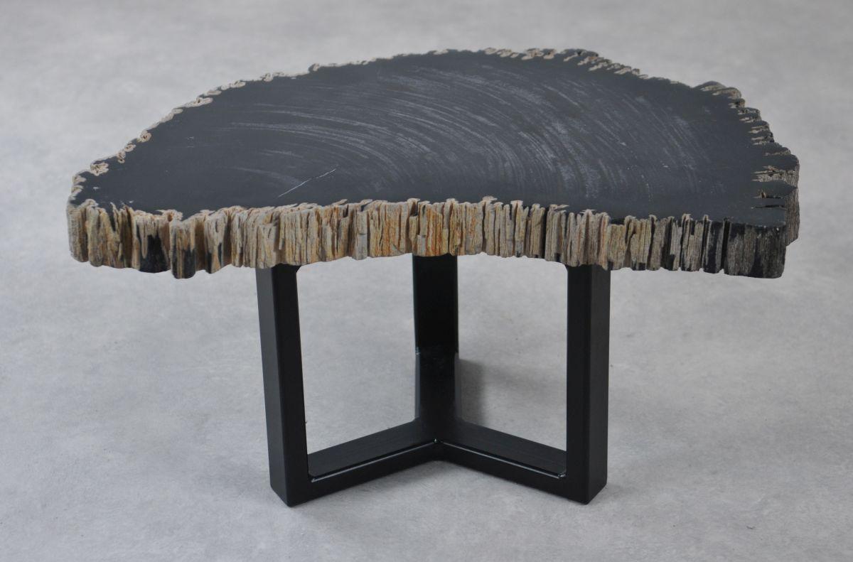 Coffee table petrified wood 35259
