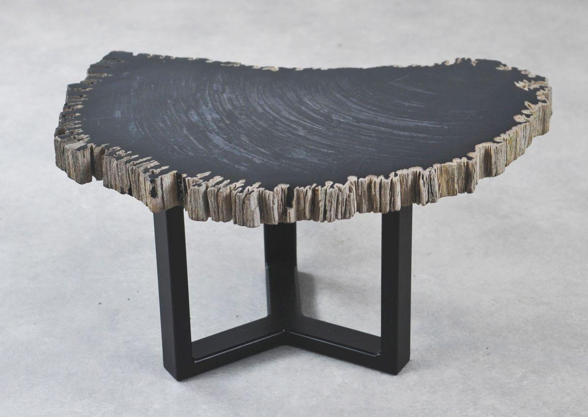Coffee table petrified wood 35261