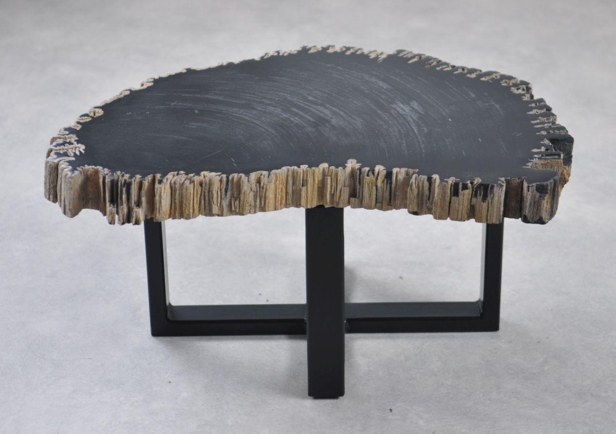 Coffee table petrified wood 35263