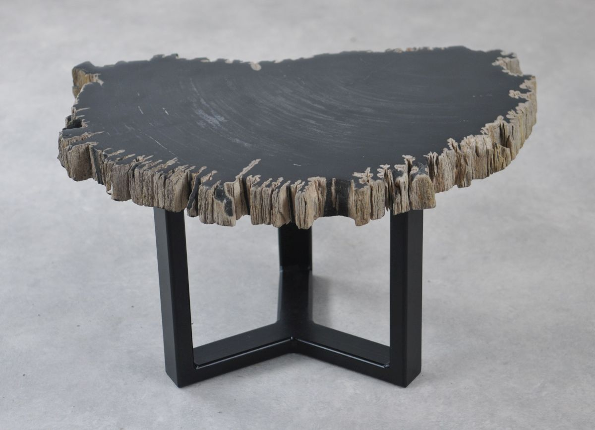 Coffee table petrified wood 35264