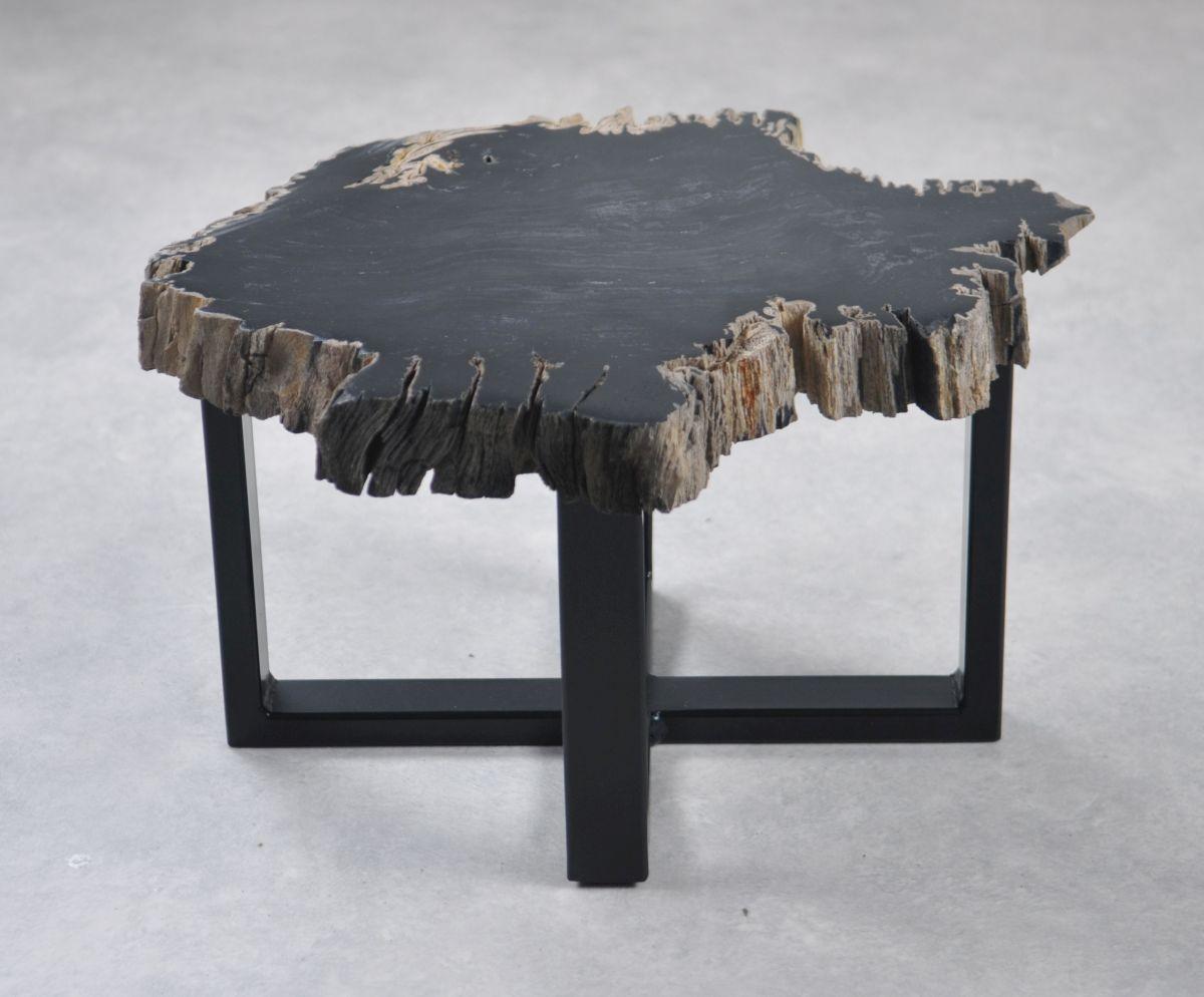 Coffee table petrified wood 35266