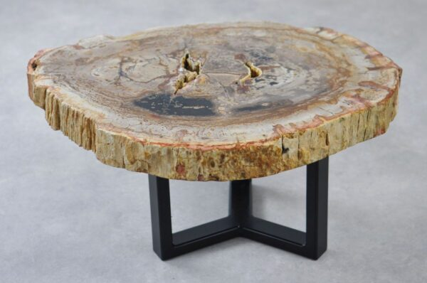 Coffee table petrified wood 35274