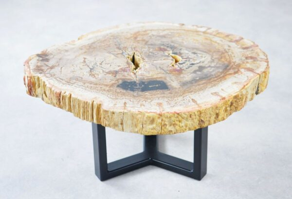 Coffee table petrified wood 35276
