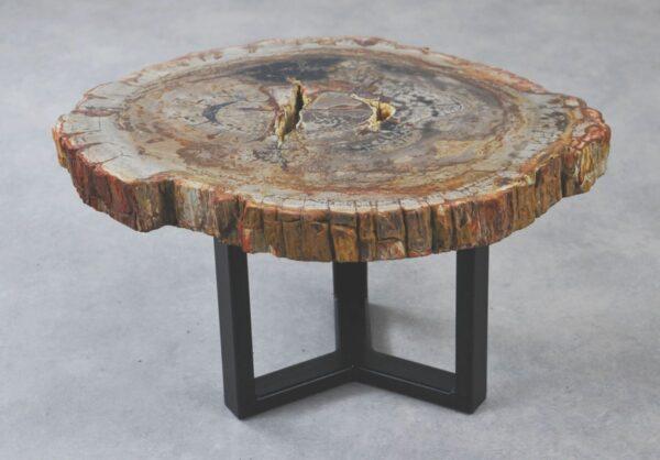 Coffee table petrified wood 35277