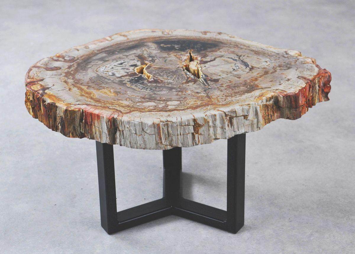Coffee table petrified wood 35279