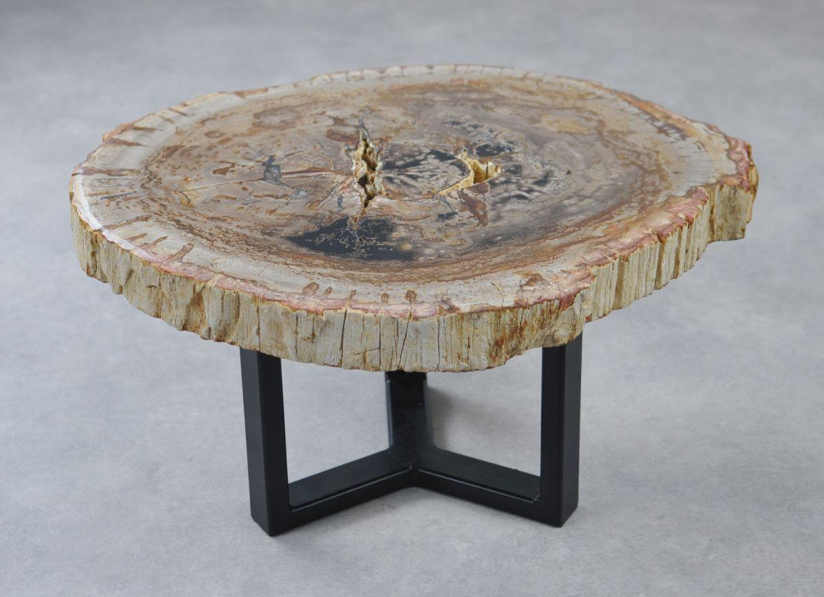 Coffee table petrified wood 35280