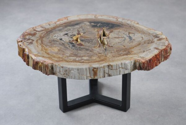 Coffee table petrified wood 35282