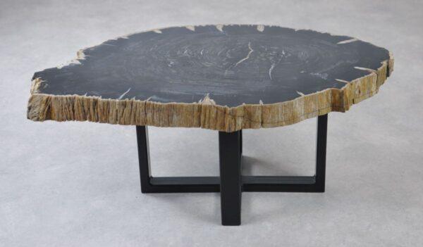 Couchtisch versteinertes Holz 35132