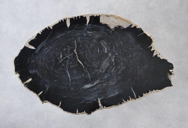 Couchtisch versteinertes Holz 35133