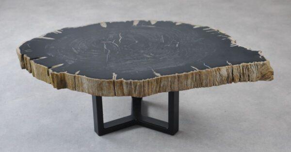 Couchtisch versteinertes Holz 35135