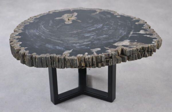 Couchtisch versteinertes Holz 35141
