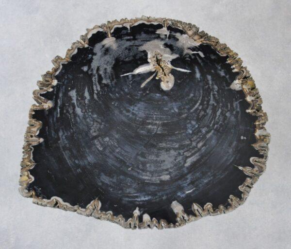 Couchtisch versteinertes Holz 35148