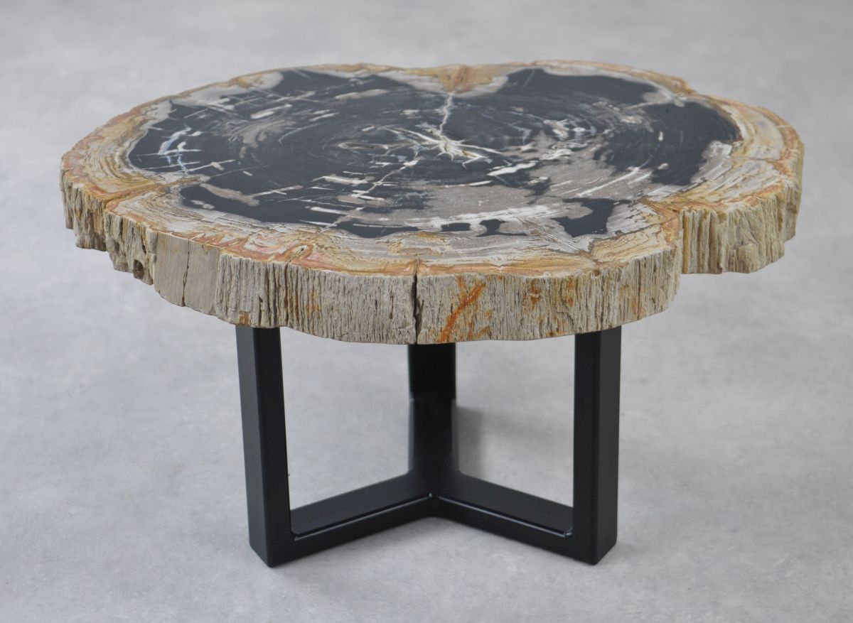 Couchtisch versteinertes Holz 35151