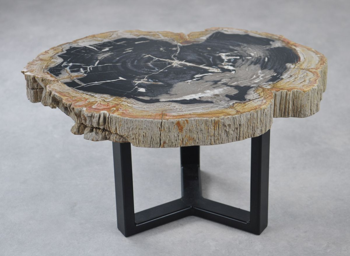 Couchtisch versteinertes Holz 35153