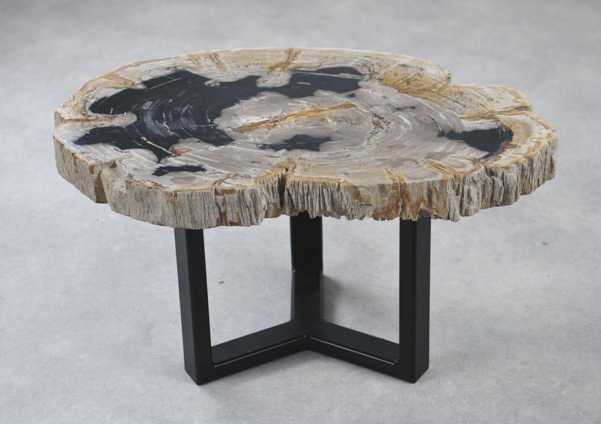 Couchtisch versteinertes Holz 35155