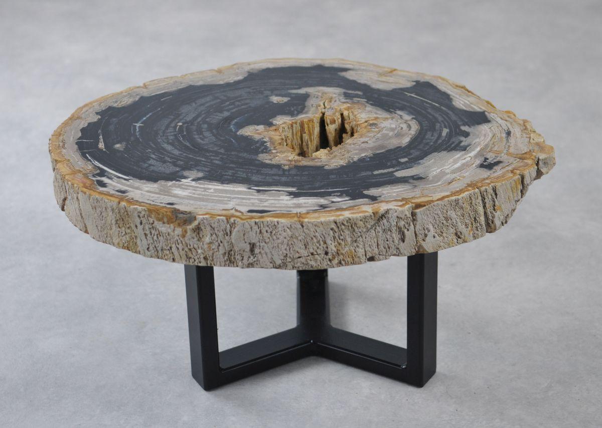 Couchtisch versteinertes Holz 35158