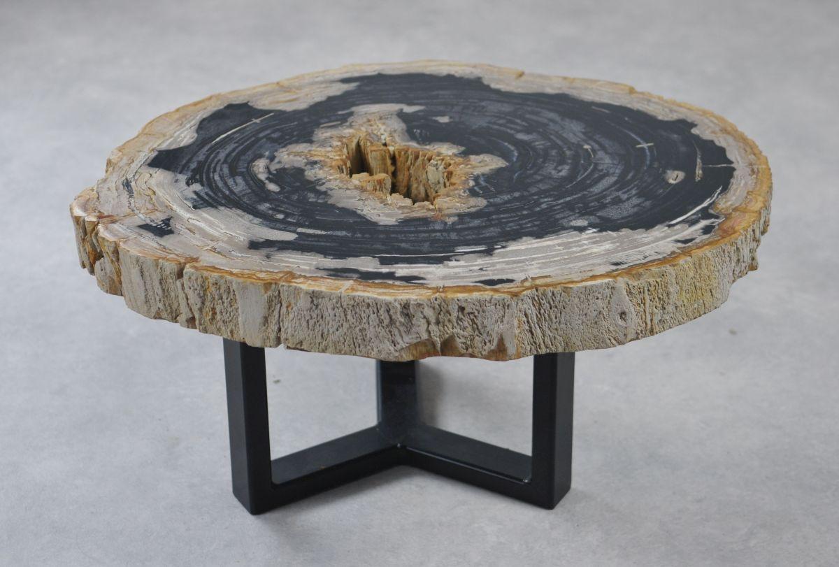 Couchtisch versteinertes Holz 35161
