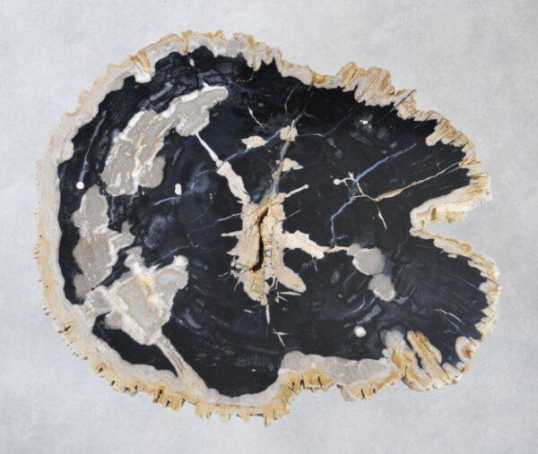 Couchtisch versteinertes Holz 35165