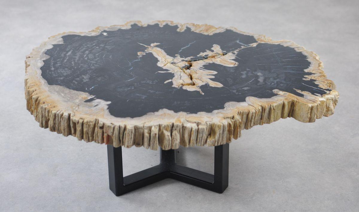Couchtisch versteinertes Holz 35168