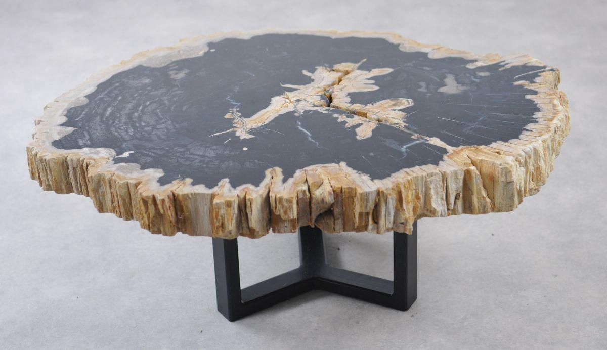 Couchtisch versteinertes Holz 35169