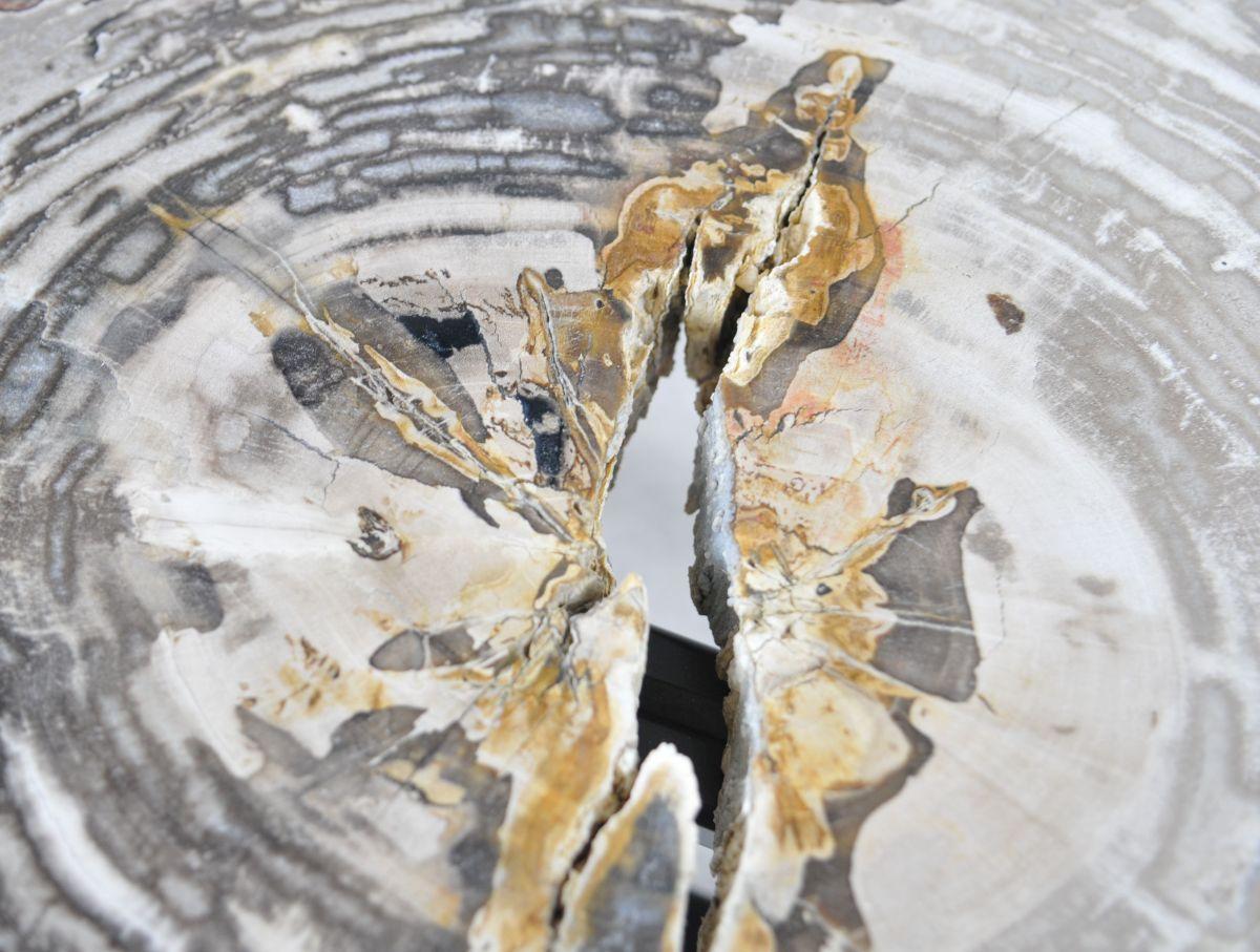 Couchtisch versteinertes Holz 35175