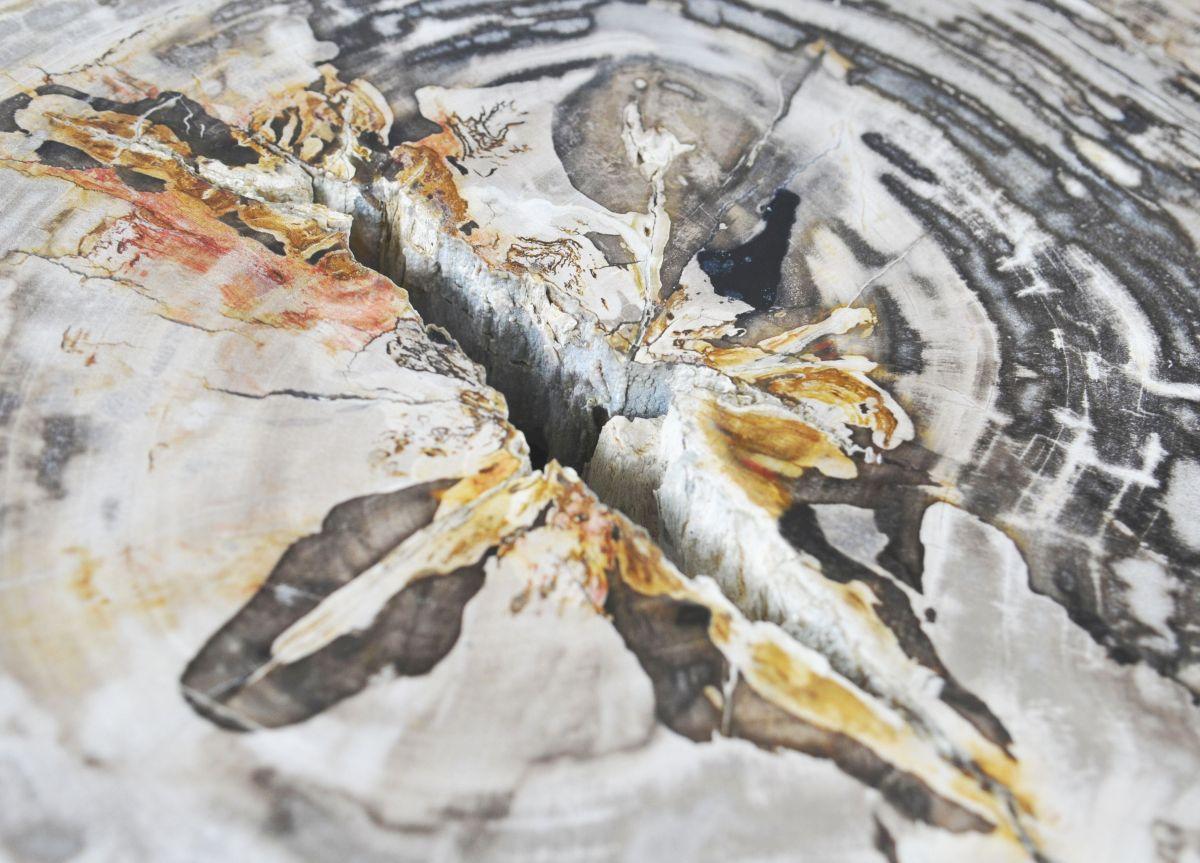 Couchtisch versteinertes Holz 35177