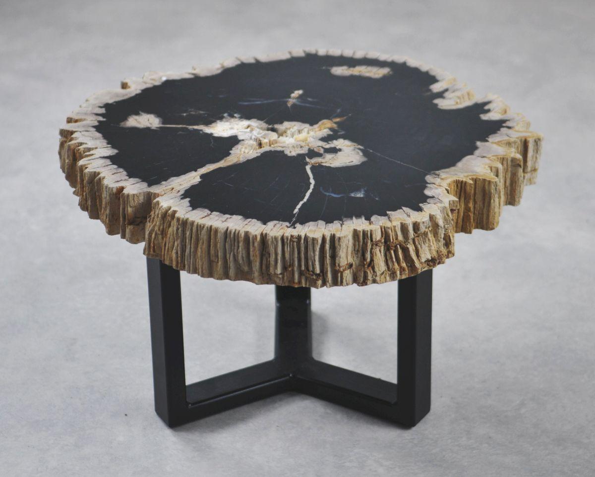 Couchtisch versteinertes Holz 35179