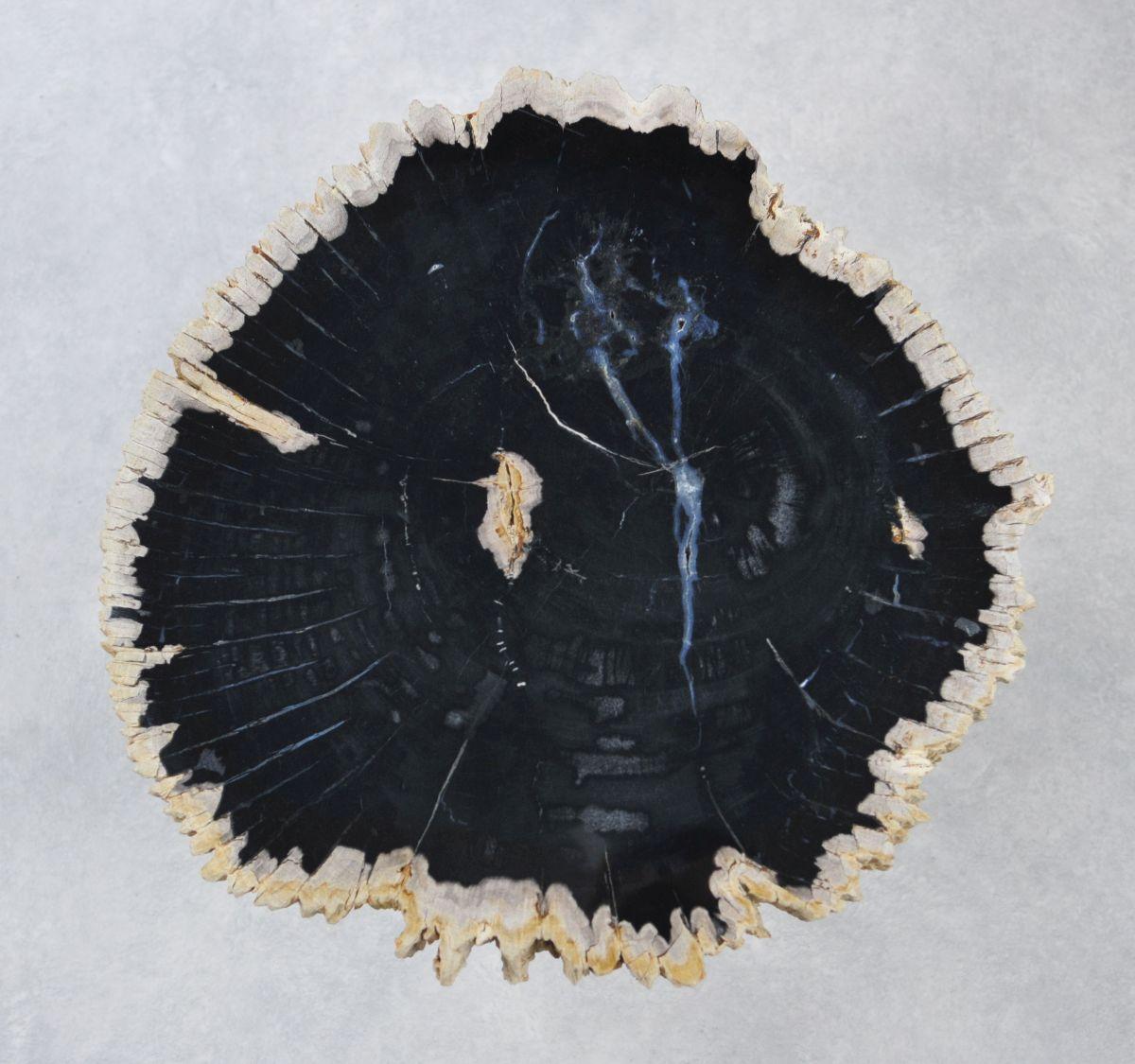 Couchtisch versteinertes Holz 35182