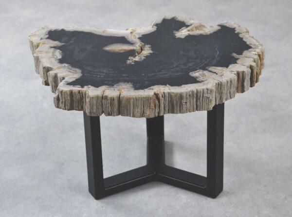 Couchtisch versteinertes Holz 35192