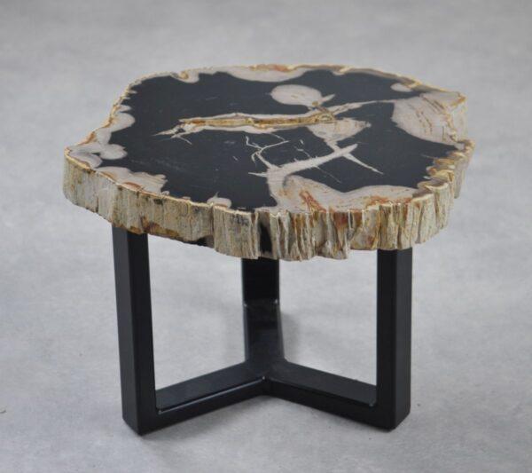 Couchtisch versteinertes Holz 35194