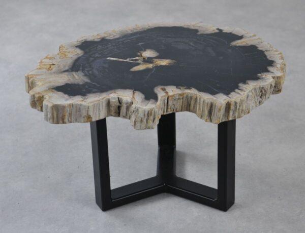 Couchtisch versteinertes Holz 35197