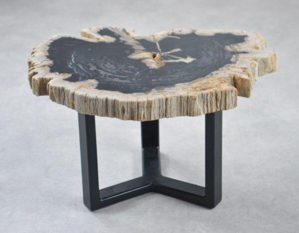 Couchtisch versteinertes Holz 35200