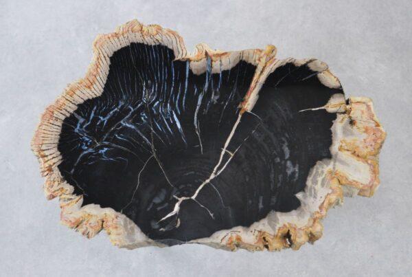 Couchtisch versteinertes Holz 35211