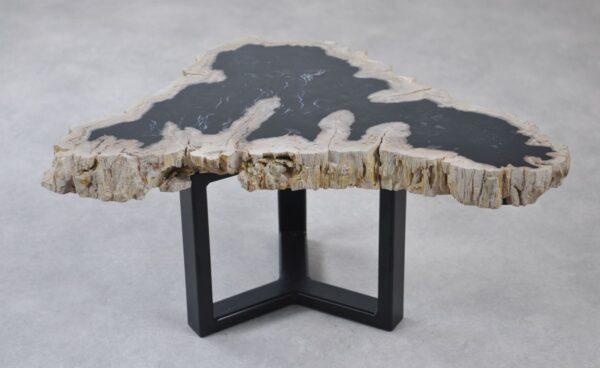 Couchtisch versteinertes Holz 35215