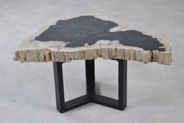 Couchtisch versteinertes Holz 35218