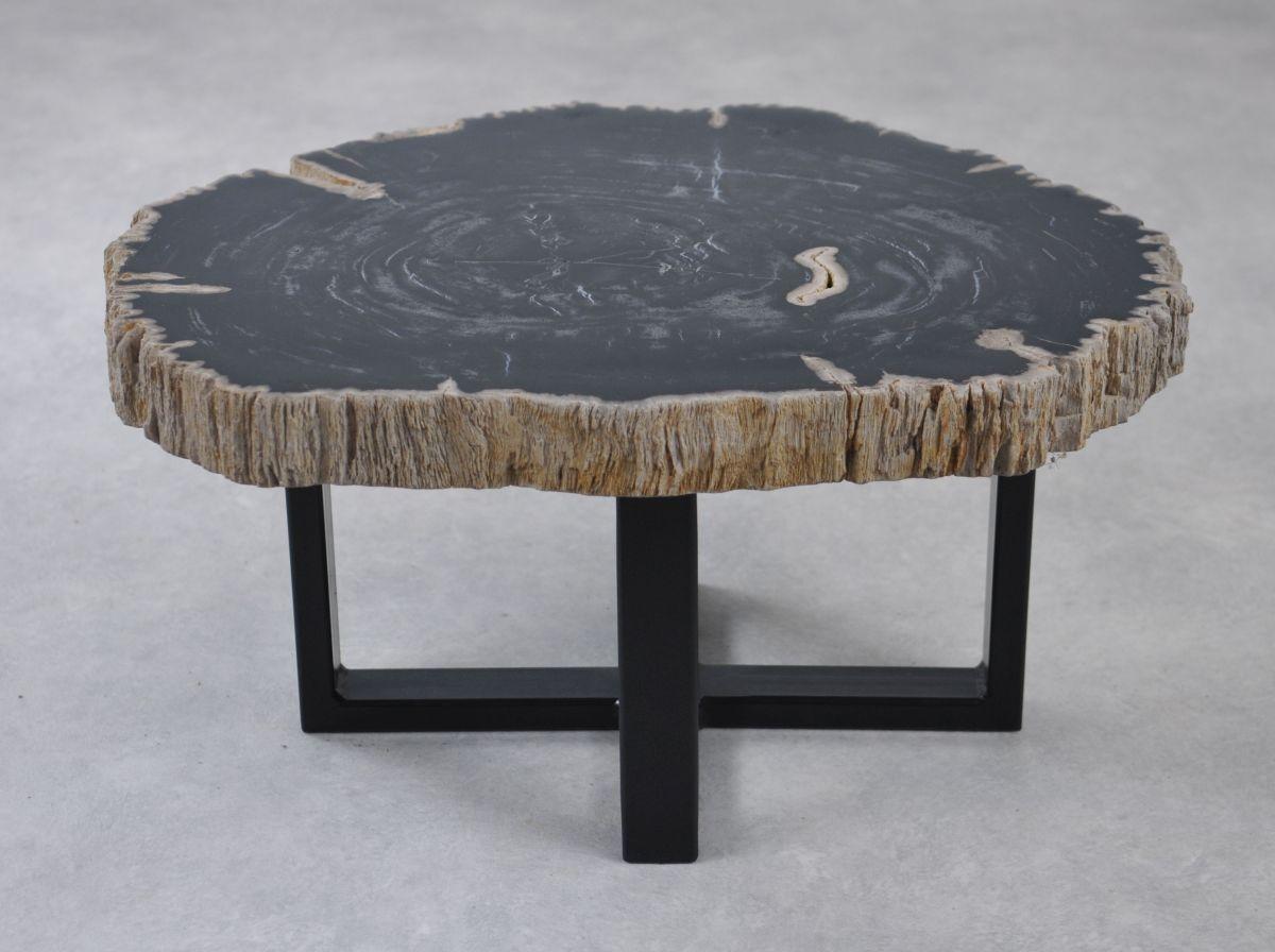 Couchtisch versteinertes Holz 35221