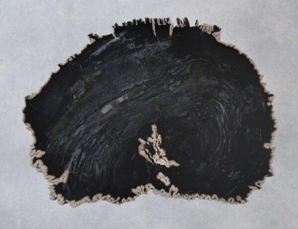 Couchtisch versteinertes Holz 35227