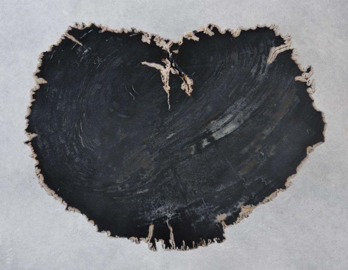 Couchtisch versteinertes Holz 35228