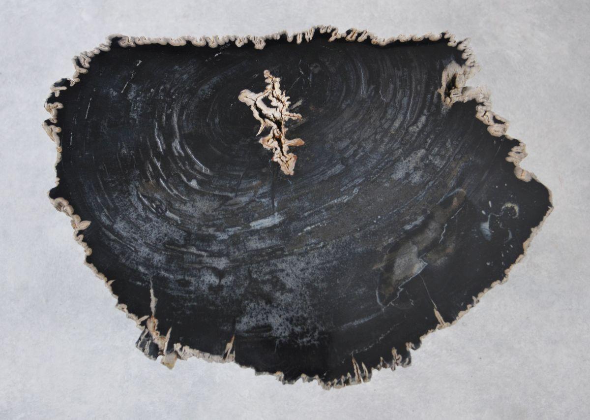 Couchtisch versteinertes Holz 35229